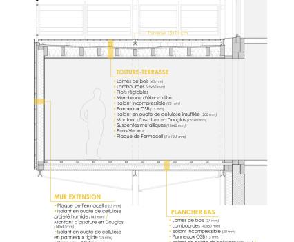 Kangourou_details_extension_coupe